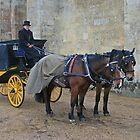 Your Carriage Awaits M'Lady by RedHillDigital