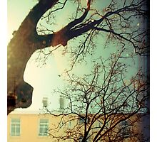 winter trees and apartments Photographic Print