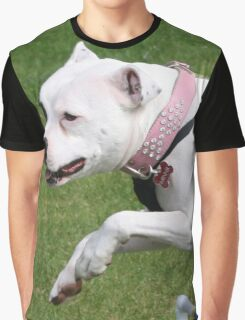 Minnie the Staffy does Agility Graphic T-Shirt