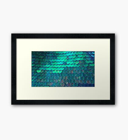 Funky, Shiny Fish Scales  Framed Print