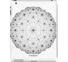 Cluster Blossoms iPad Case/Skin