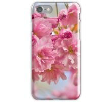 Sakura cherry-blossoms iPhone Case/Skin