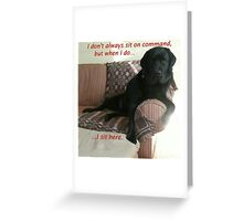 Black Dog Sits On Command on Couch Greeting Card