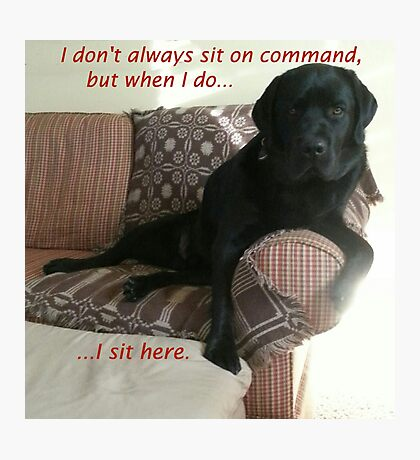 Black Dog Sits On Command on Couch Photographic Print