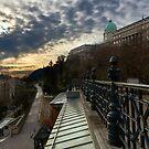 Dawn over Buda Castle, Budapest by Nando MacHado