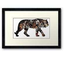 Tiger 3 White Framed Print