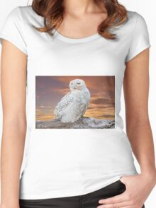 Snowy Owl Perched at Sunset Women's Fitted Scoop T-Shirt