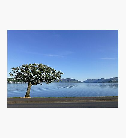 Rothesay . Isle of Bute. Scotland. Photographic Print