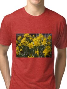 The Bounty of Spring Tri-blend T-Shirt