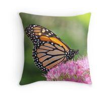 Monarch Butterfly in Summer Throw Pillow
