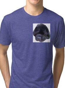 Gracie Girl Tri-blend T-Shirt