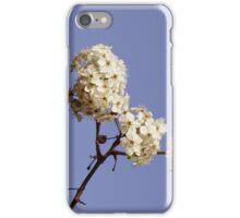 Bradford pear blooms iPhone Case/Skin