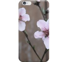 Pink Peach Blossom iPhone Case/Skin