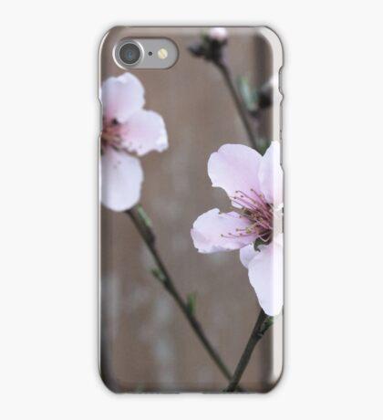 Pink Peach Blossom iPhone Case/Skin