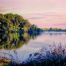 A River Somewhere by wallarooimages