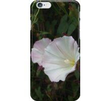 Wild Lily  iPhone Case/Skin