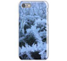 Winter frost iPhone Case/Skin
