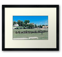 A Flock of Providence Geese Framed Print