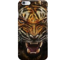 cats tiger iPhone Case/Skin