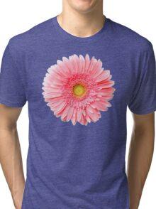Flower Power, Pink Fresh Gerbera Tri-blend T-Shirt