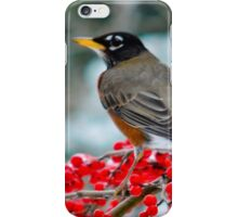 Robin Perched on Snowy Winterberry iPhone Case/Skin