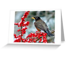 Robin Perched on Snowy Winterberry Greeting Card