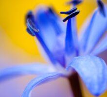 Blue romantic flower Sticker