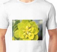 Ant  Unisex T-Shirt