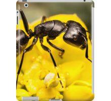 Ant close up iPad Case/Skin