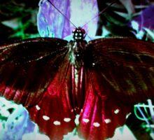 Crimson Butterfly Sticker