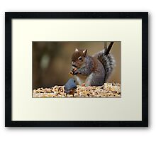 sharing the table Framed Print