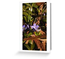 Hidden Flower. Greeting Card