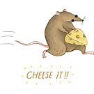 Cheese It!! by Katie Corrigan