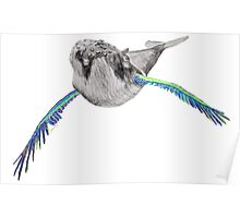 Humpback whale with wings (blue & light green) Poster