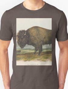 John James Audubon - Bos americanus, Gmel, American Bison or Buffalo. 1-7   Male.1845 T-Shirt