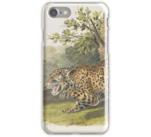 John James Audubon - Felis onca, Linn. The Jaguar. Female 1846 iPhone Case/Skin