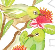Silver eye birds and Feijoa flowers Sticker