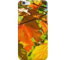 Herbst iPhone Case/Skin