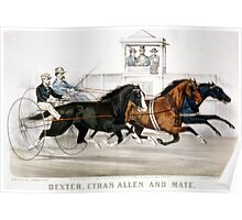 Dexter, Ethan Allen and mate In their wonderful race, over the fashion course - 1874 - Currier & Ives Poster