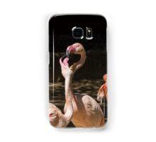 pink flamingo Phoenicopterus ruber roseus Samsung Galaxy Case/Skin