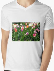 Tulips Glowing in the Sun T-Shirt