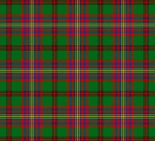 Tartan Of The Celts Tartan by thecelticflame