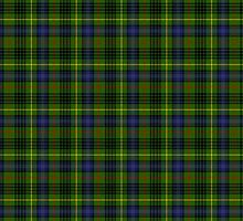 Clan Stewart Hunting Tartan by thecelticflame