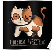 I destroy everything Poster