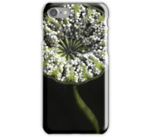 Cross-section of poppy capsule  iPhone Case/Skin