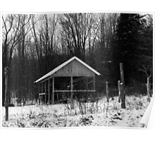 Black and White - rural winter (2012) Poster
