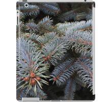 fir tree buds iPad Case/Skin