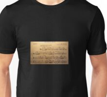 Bassoon - Rite of Spring Solo Unisex T-Shirt