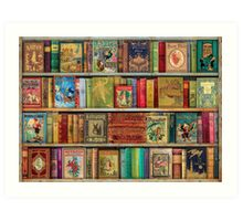 A Daydreamer's Book Shelf Art Print