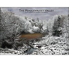Pemigewasset Valley Poster - Moose on Snowy Oxbow Photographic Print
